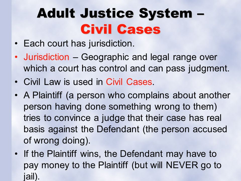 Adult Justice System – Civil Cases