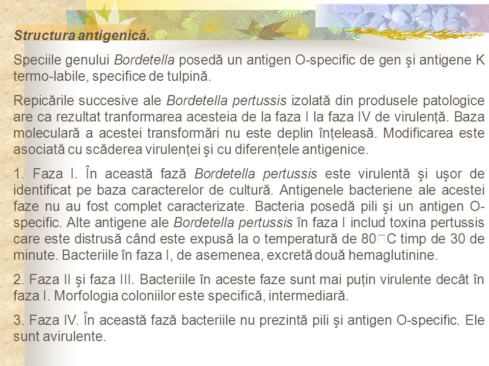 Structura antigenică. Speciile genului Bordetella posedă un antigen O-specific de gen şi antigene K termo-labile, specifice de tulpină.