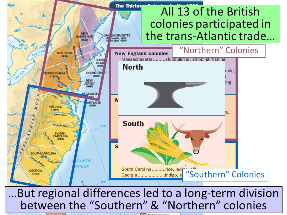 All 13 of the British colonies participated in the trans-Atlantic trade…