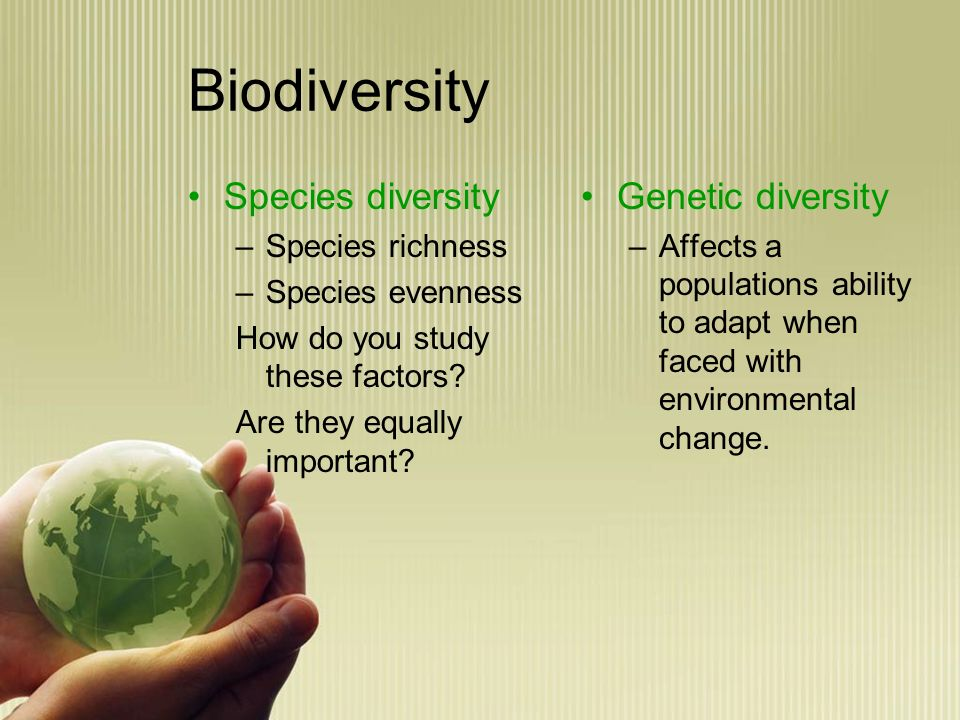 Human Impact and the Environment - ppt video online download