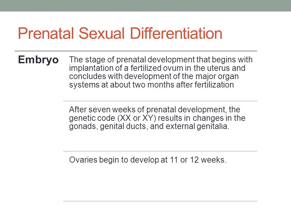 Prenatal sexual differentiation of the brain may explain why