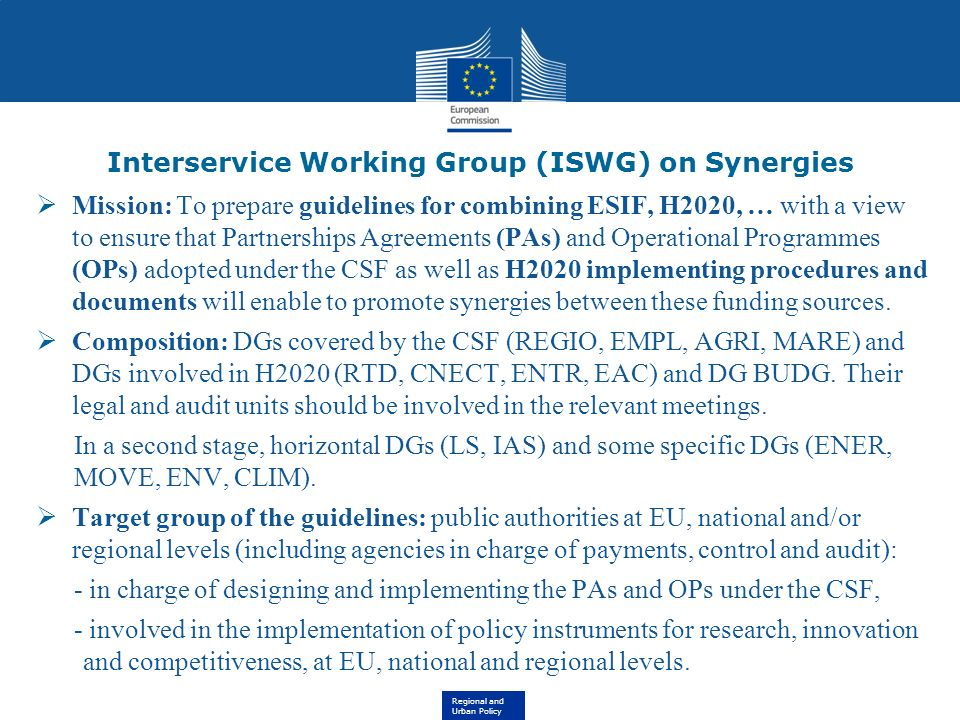 Interservice Working Group (ISWG) on Synergies