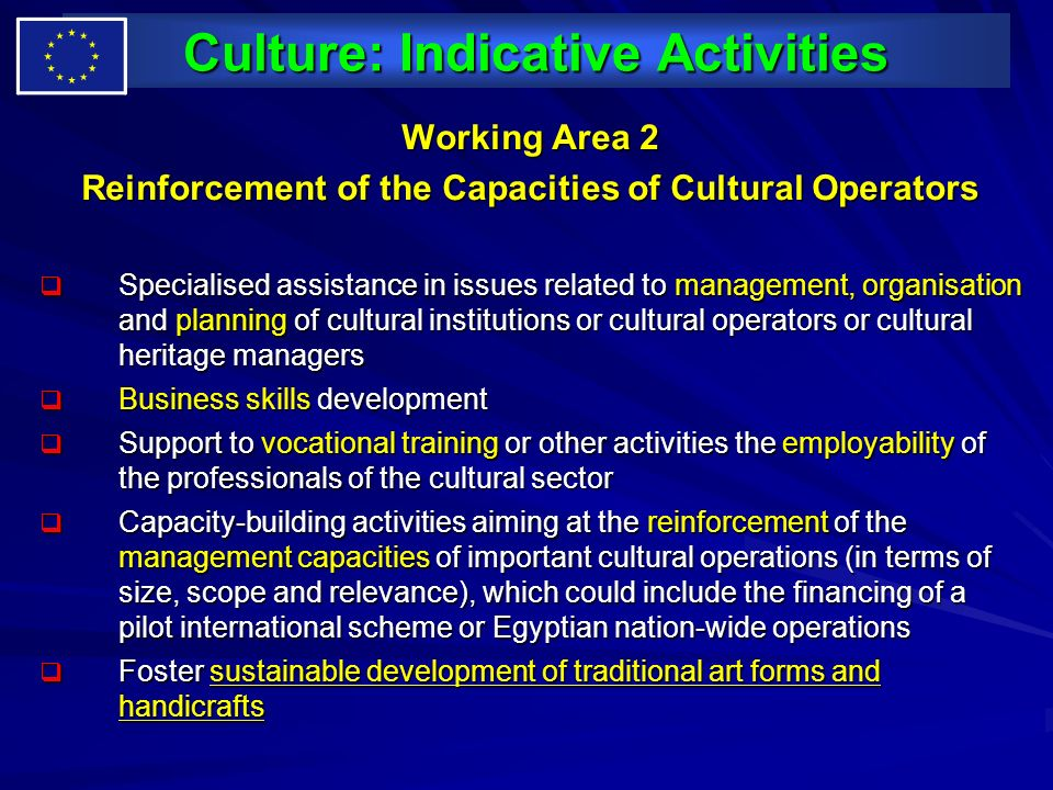 Culture: Indicative Activities