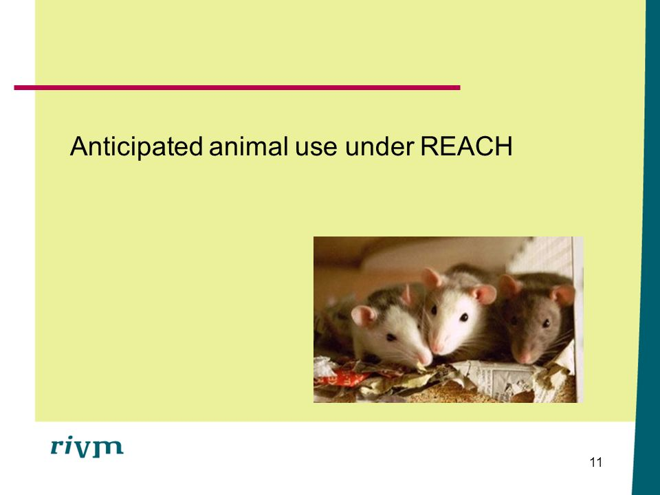 Anticipated animal use under REACH