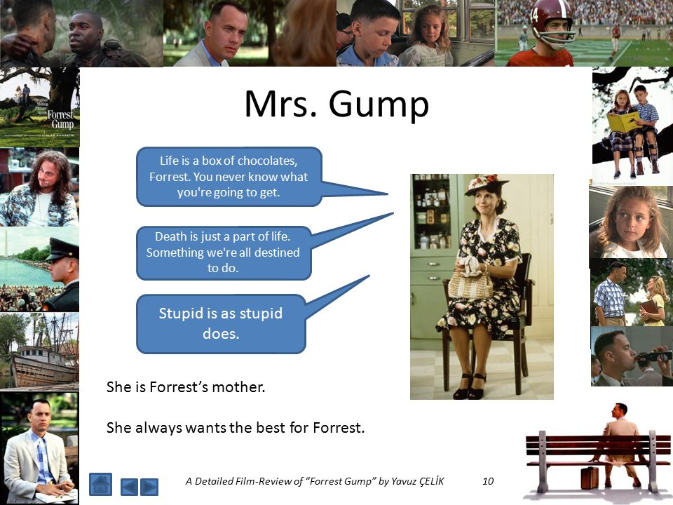 A Detailed Film Review Of Forrest Gump Ppt Video Online Download