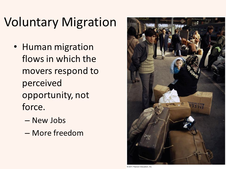 Voluntary Migration Human migration flows in which the movers respond to perceived opportunity, not force.