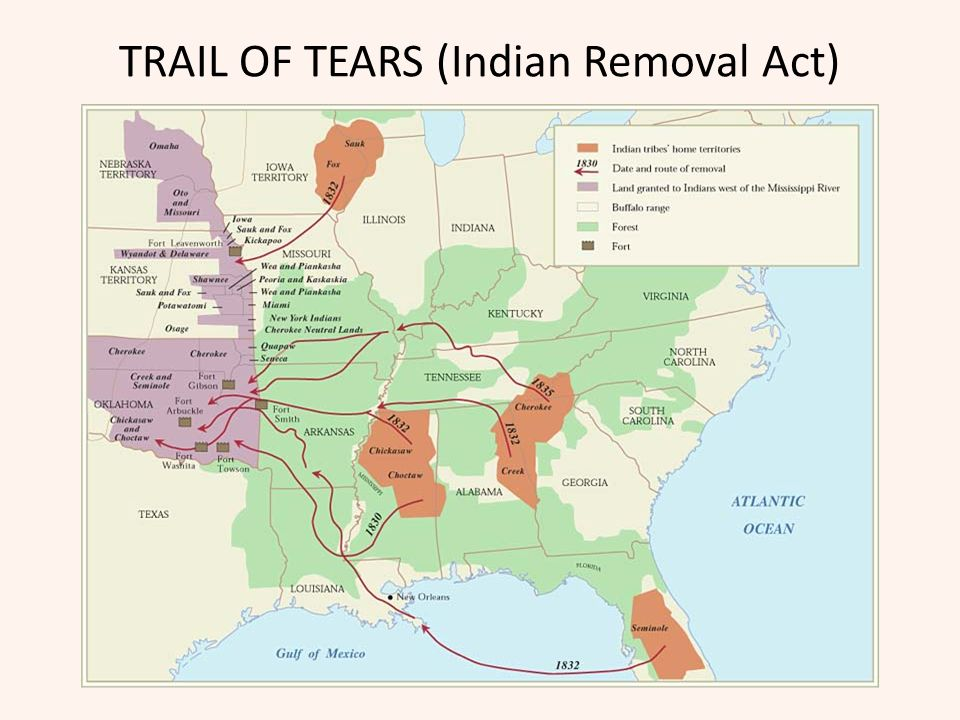 TRAIL OF TEARS (Indian Removal Act)