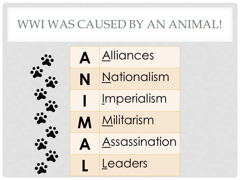 WWI was caused by an ANIMAL!