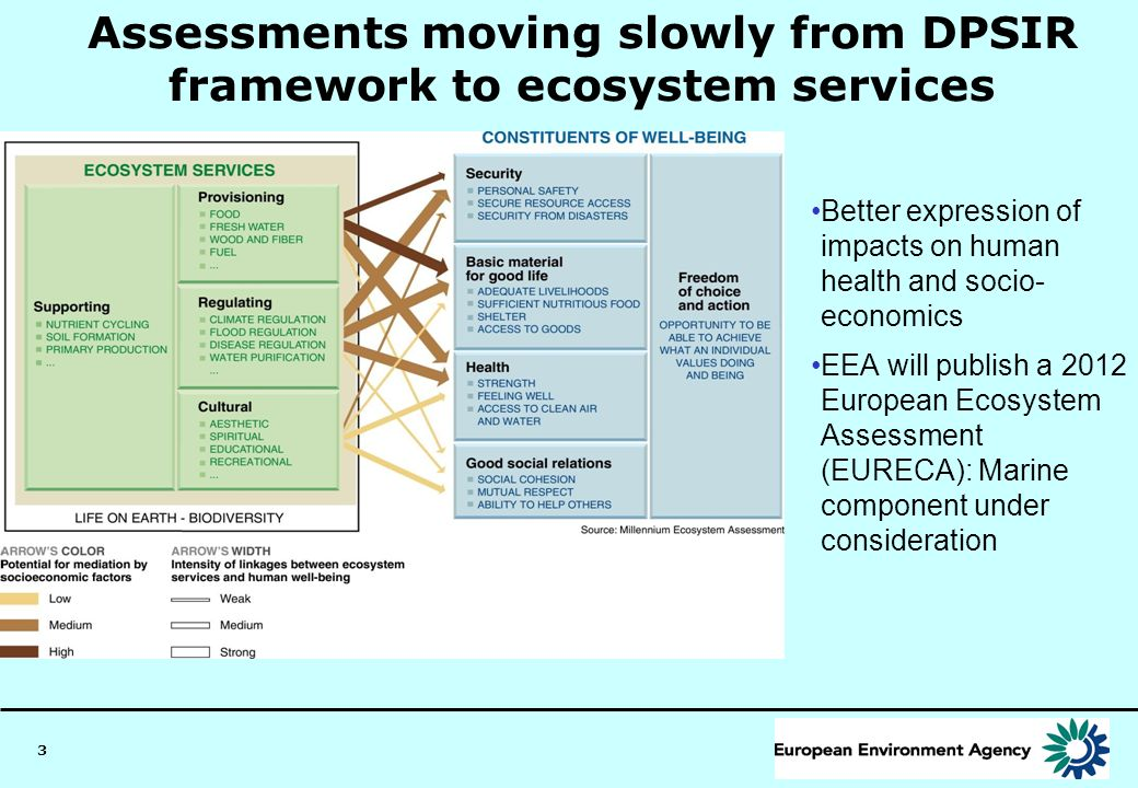 Assessments moving slowly from DPSIR framework to ecosystem services