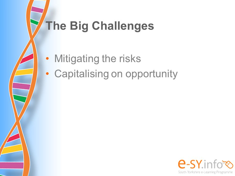 The Big Challenges Mitigating the risks Capitalising on opportunity