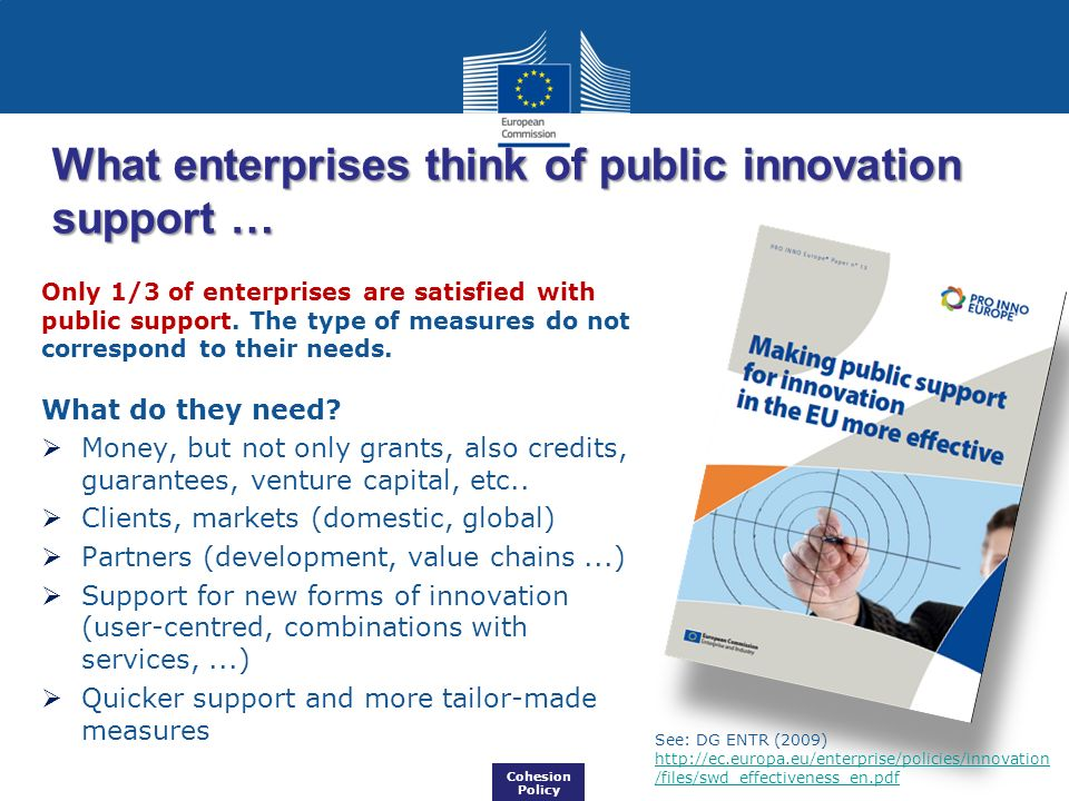 What enterprises think of public innovation support …