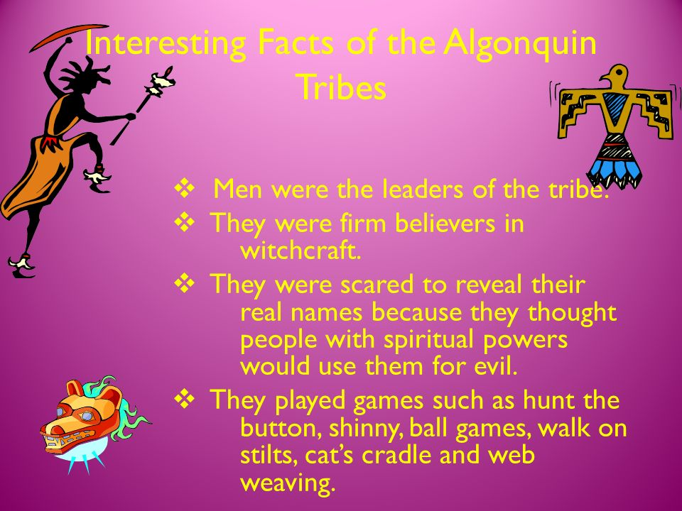 Algonquin Tribes by Mrs  Freire's Class - ppt video online
