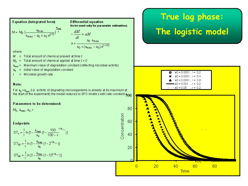 True lag phase: The logistic model