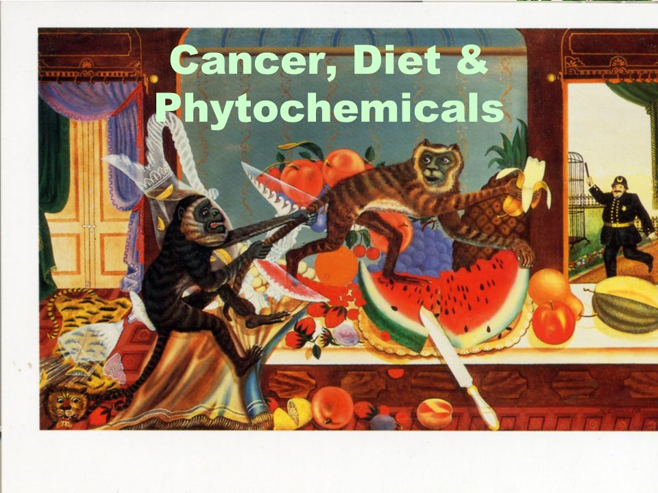 Cancer, Diet & Phytochemicals - ppt download