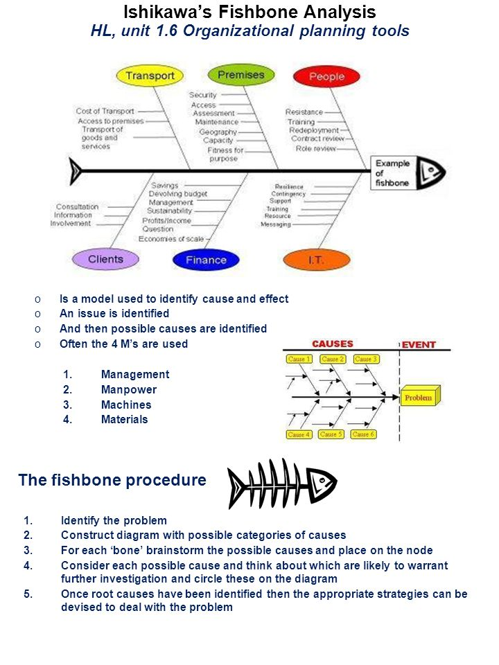 Ib business and management hl business tools ppt download the fishbone procedure ccuart Gallery