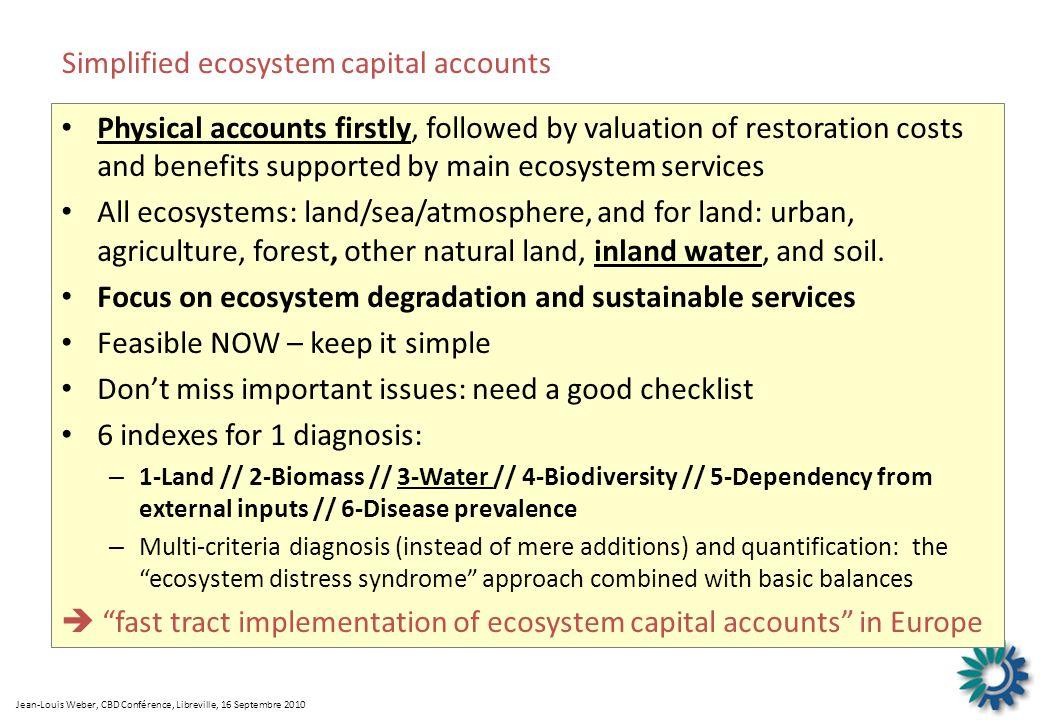 Simplified ecosystem capital accounts