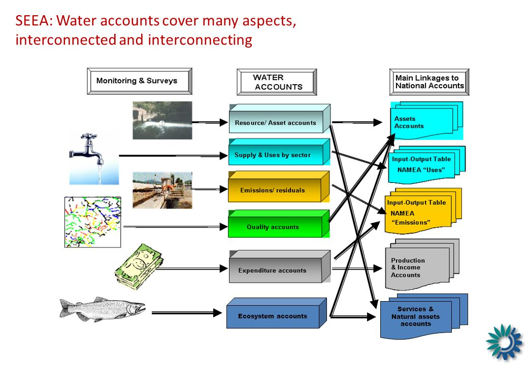 Services & Natural assets accounts