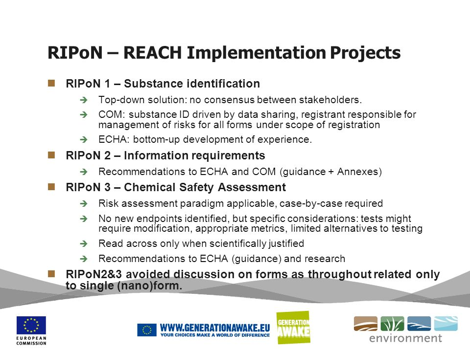 RIPoN – REACH Implementation Projects