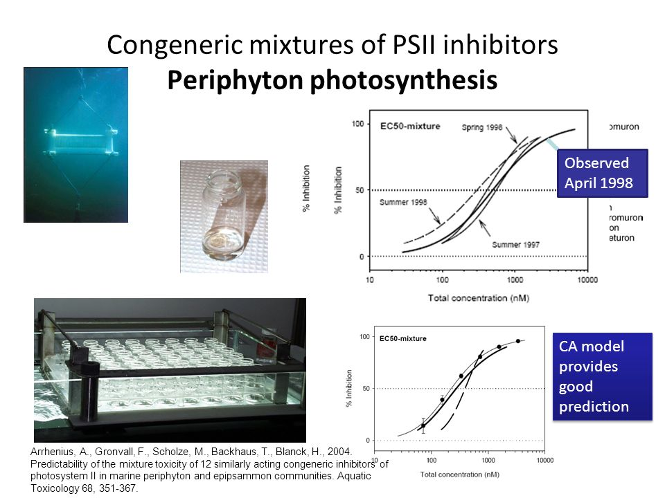 Congeneric mixtures of PSII inhibitors Periphyton photosynthesis