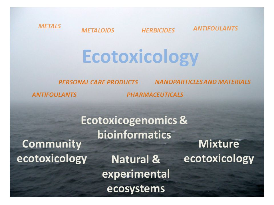 Natural & experimental ecosystems