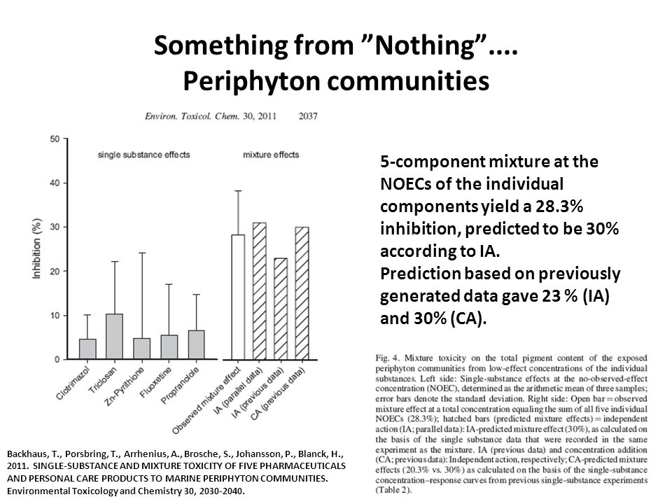 Something from Nothing .... Periphyton communities