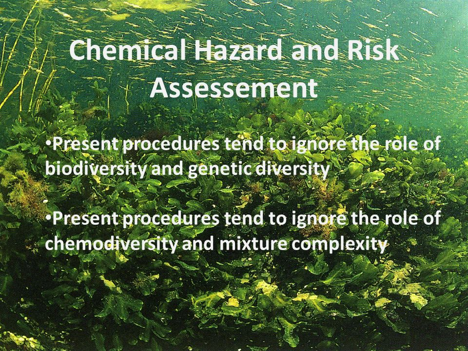 Chemical Hazard and Risk Assessement