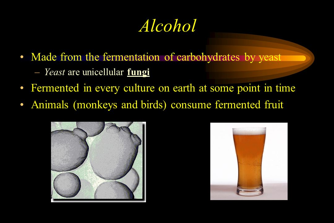 """Alcohol An Arabic Word Meaning """"Something of spirit"""" ( or demon"""