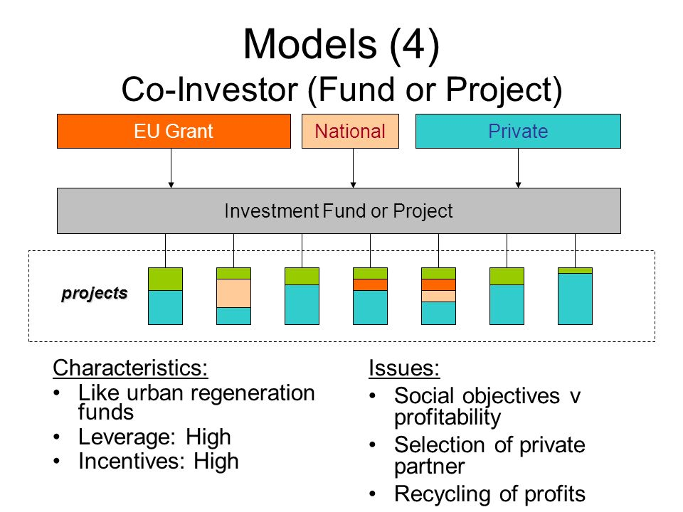 Models (4) Co-Investor (Fund or Project)