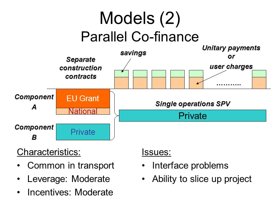 Models (2) Parallel Co-finance
