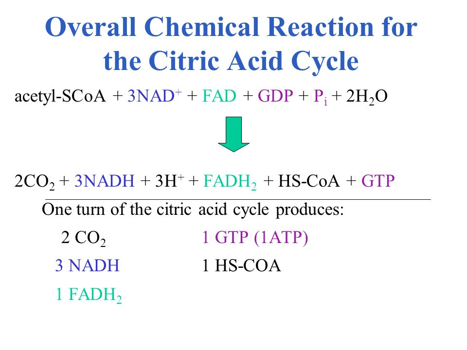 Overall Chemical Reaction for the Citric Acid Cycle