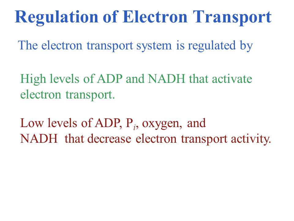 Regulation of Electron Transport