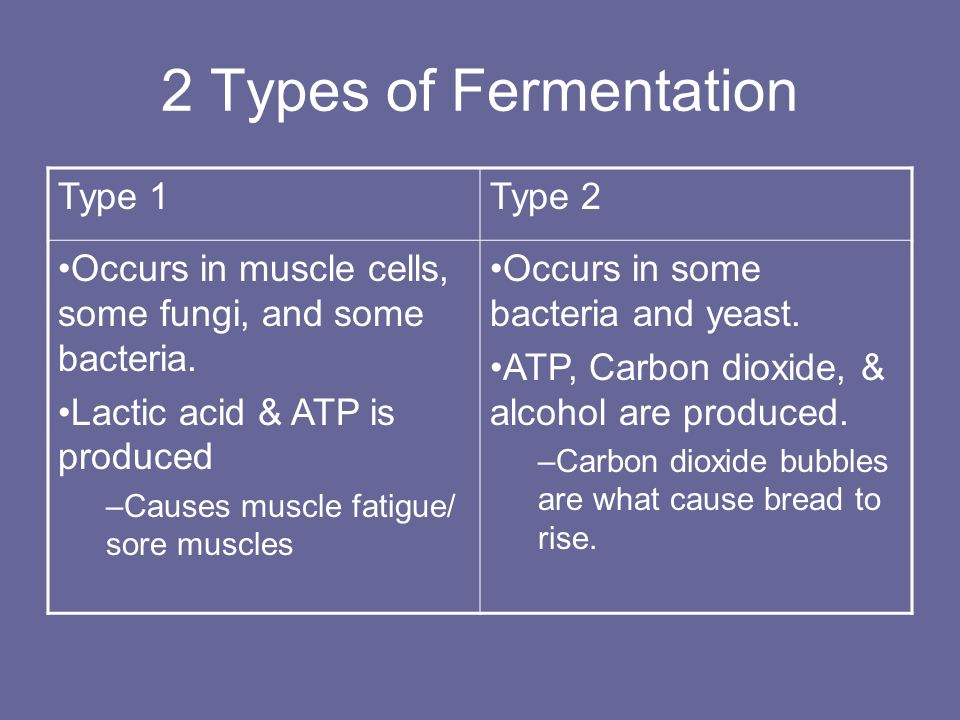 2 Types of Fermentation Type 1 Type 2