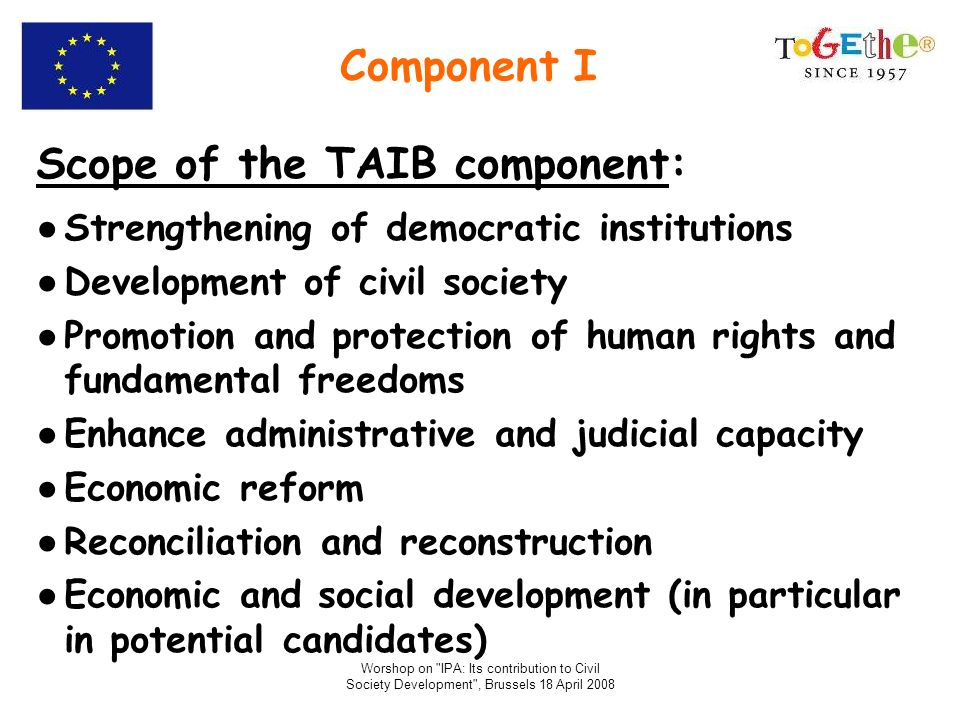 Scope of the TAIB component: