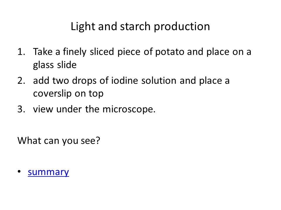 Light and starch production