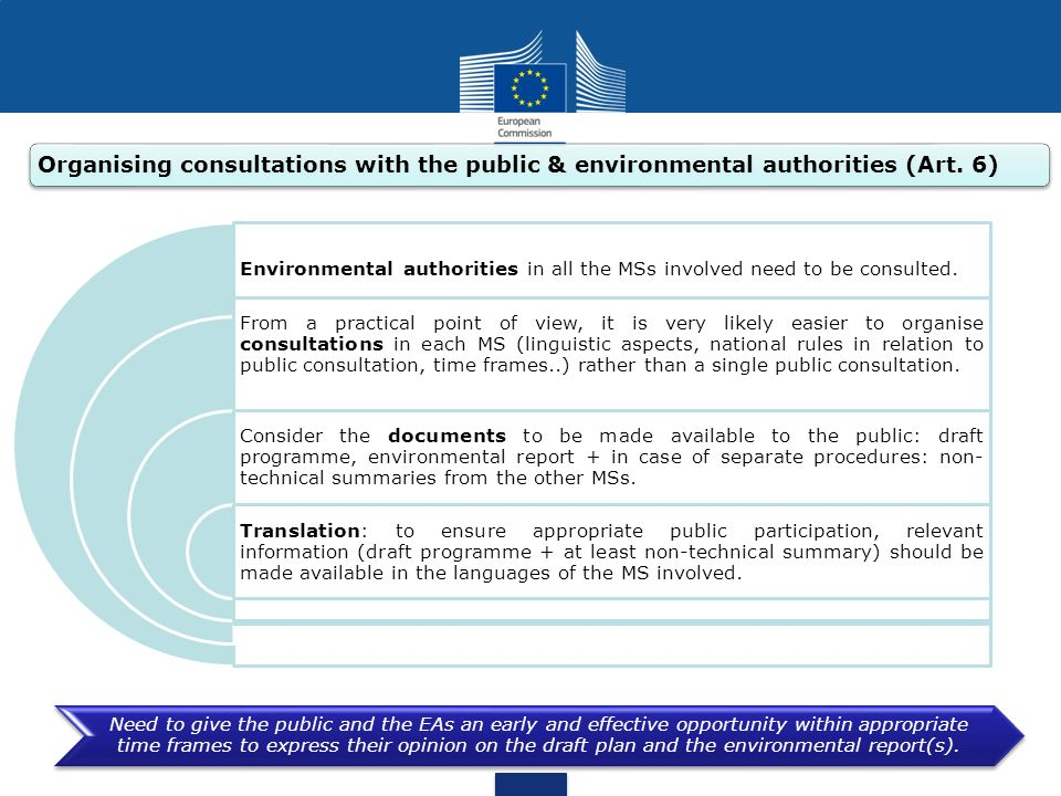 Organising consultations with the public & environmental authorities (Art. 6)