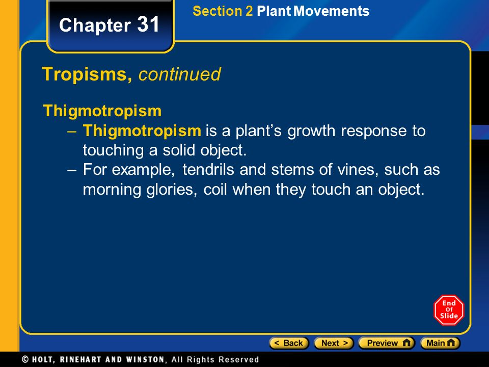 Chapter 31 Table Of Contents Section 1 Plant Hormones Ppt Video