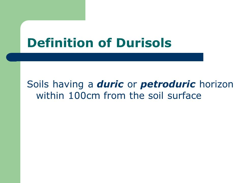 Definition of Durisols