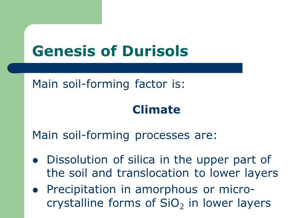 Genesis of Durisols Main soil-forming factor is: Climate