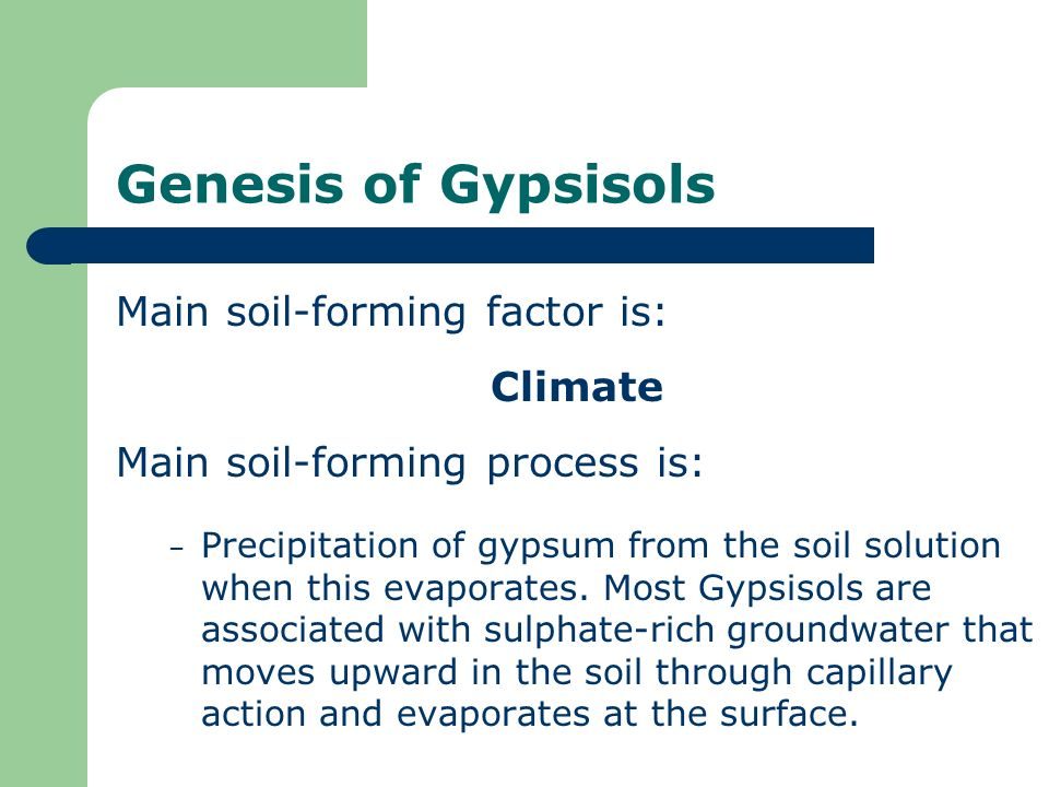 Genesis of Gypsisols Main soil-forming factor is: Climate