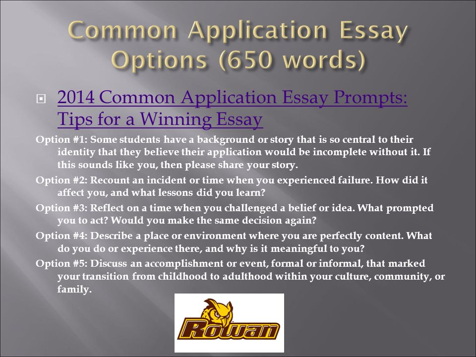 3 Common Application Essay Options
