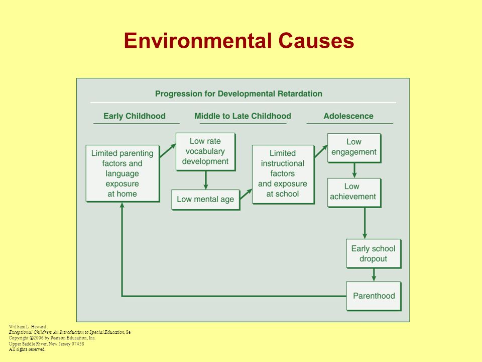 Chapter 4 Mental Retardation Ppt Video Online Download. Environmental Causes. Ducati. Causes Diagram Special Education At Scoala.co