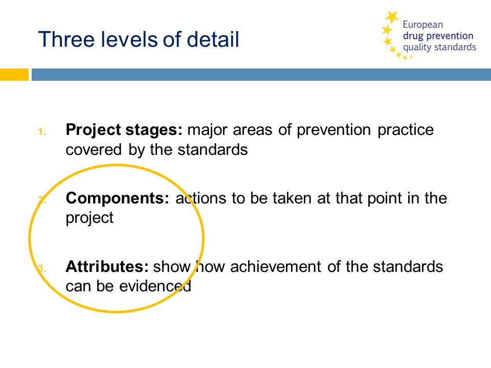Three levels of detail Project stages: major areas of prevention practice covered by the standards.