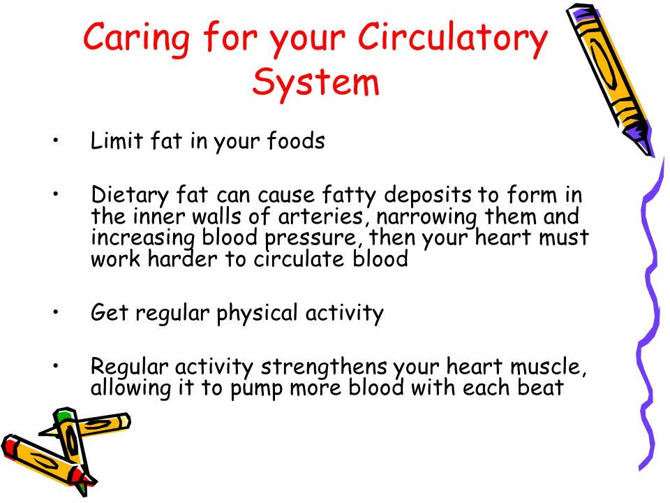 Caring for your Circulatory System