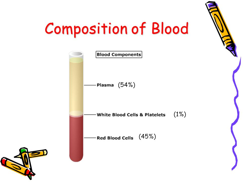 Composition of Blood (54%) (1%) (45%)