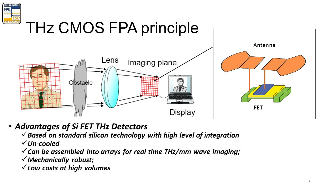 How to achieve a homogeneous sensitivity in THz detector