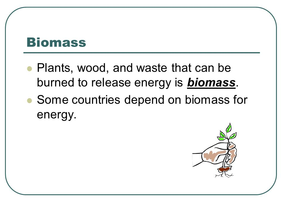 Biomass Plants, wood, and waste that can be burned to release energy is biomass.