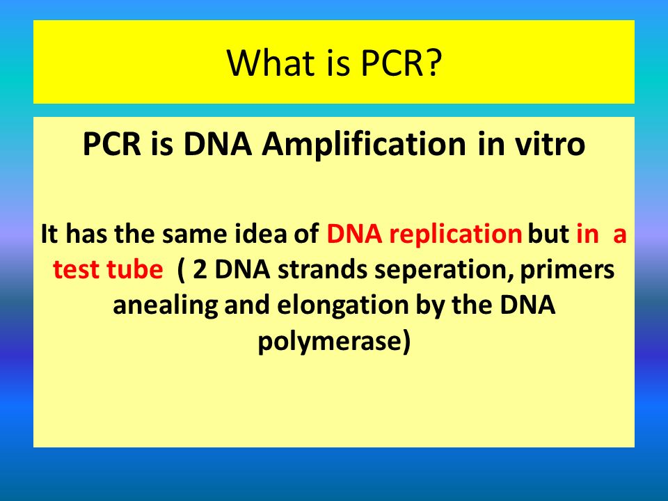 PCR is DNA Amplification in vitro