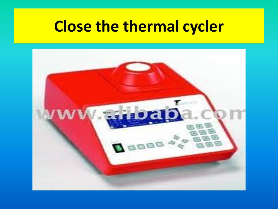 Close the thermal cycler