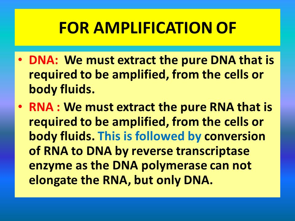 FOR AMPLIFICATION OF DNA: We must extract the pure DNA that is required to be amplified, from the cells or body fluids.