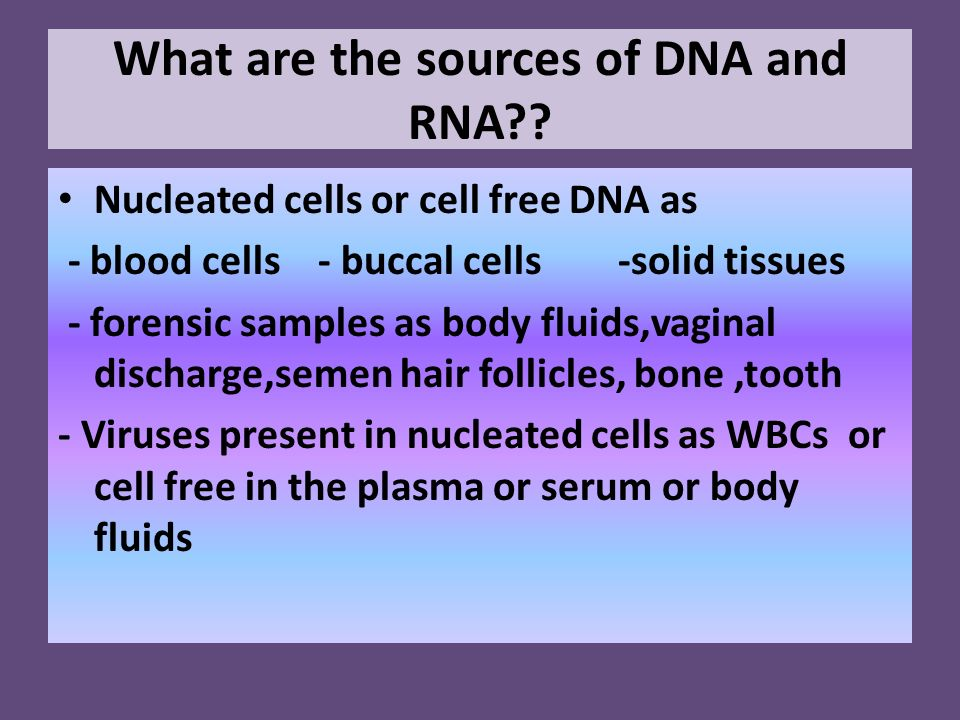 What are the sources of DNA and RNA